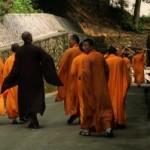 Dieta budista, pentru slabire si longevitate